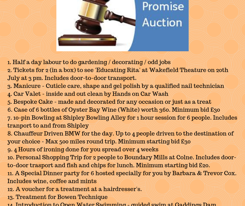 Summer Fun Day Promise Auction – new bids