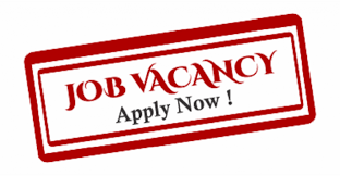 Teaching Assistants Wanted